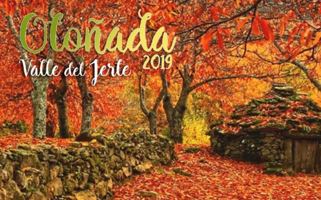 AVANCE PROGRAMACIÓN OTOÑADA 2019